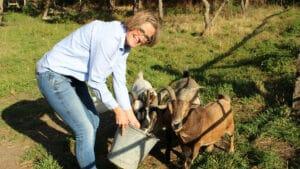 Ziegenfütterung mit Dorothee Schwienhorst