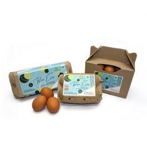 Bio-Eier vom Hof Schwienhorst in 6er-, 10er Verpackungen sowie 1 kg Boxen natürlich hof Schwienhorst